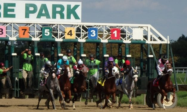 Delaware Park: Owners' Day undercard report