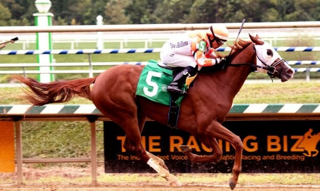 Belial tabbed as Maryland Juvenile Filly Championship favorite