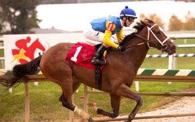 Altamura vanned off after Oakley victory