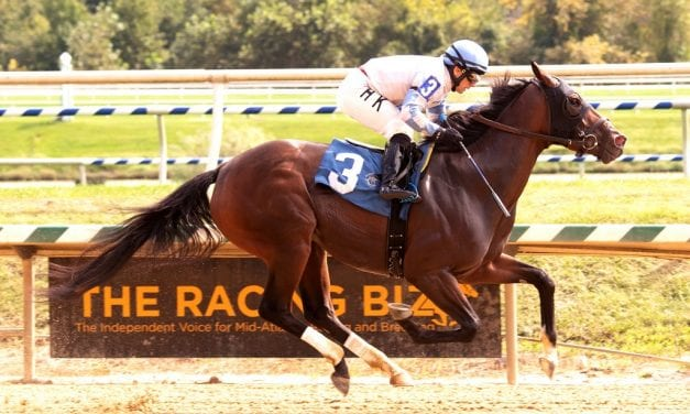 Laurel Park Notes: Free Kitty graduates in 14th try