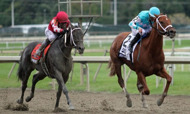 R T's Spot Plays: Parx Racing January 19