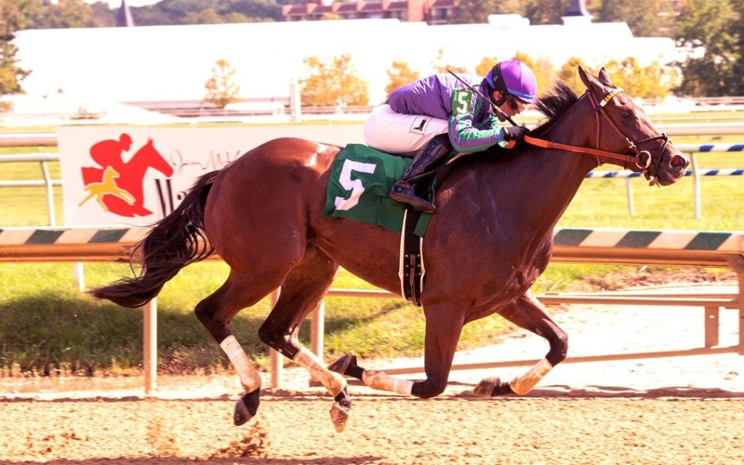 "River Gal ""carries family forward"" with Jamestown win"