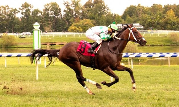 Sheikh of Sheiks cruises to fourth straight win