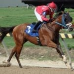 Timonium: Five wins and a change of venue for Erin Walker