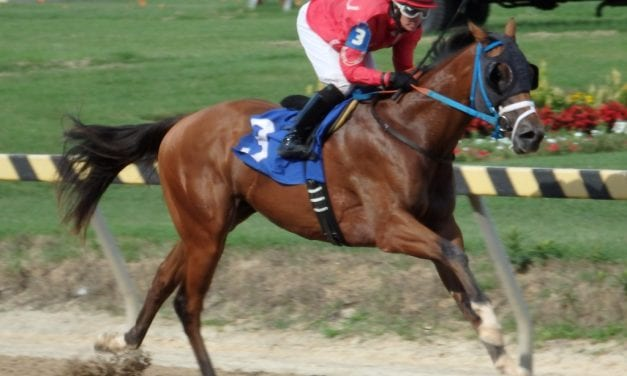 September 15 handicapping contest leaderboard