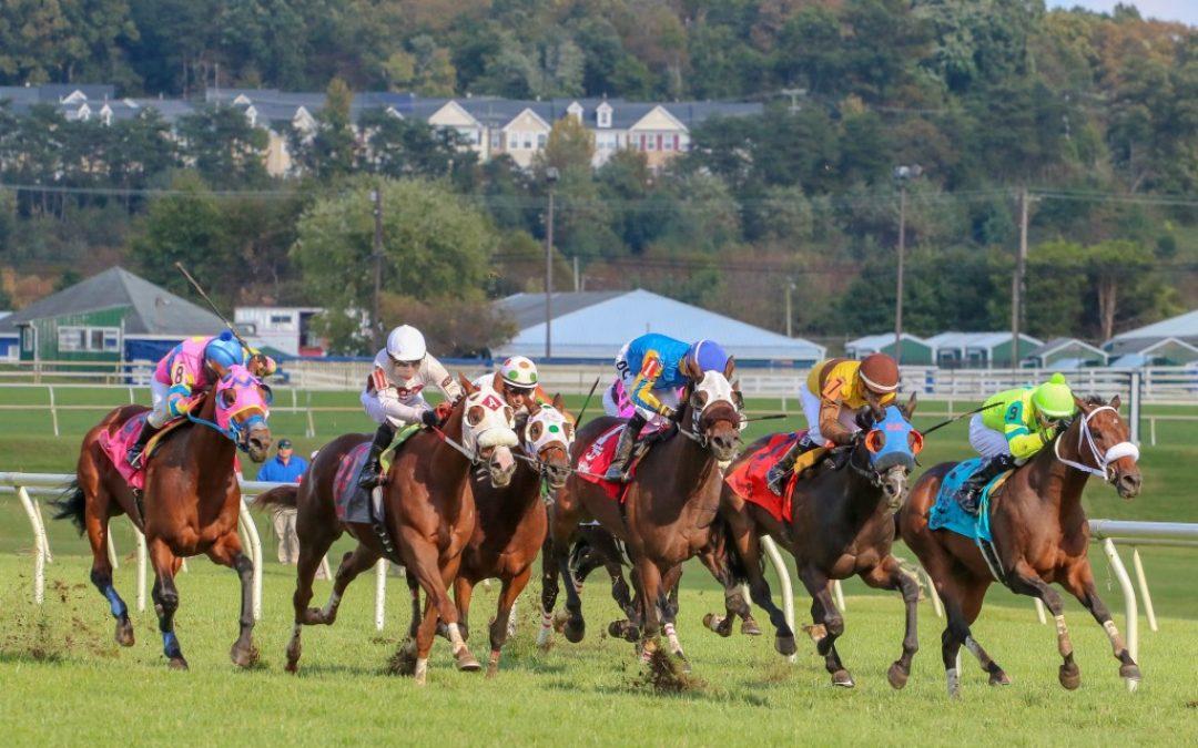 Jockey Club releases 2019 Fact Book