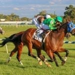 Talk Show Man rallies to take MD Million Turf
