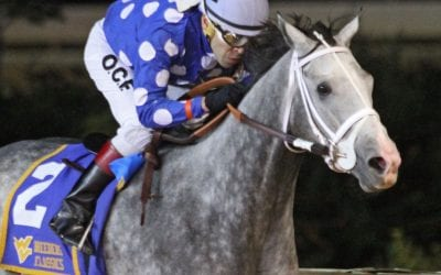 Runnin'toluvya carries local hopes in CT Classic