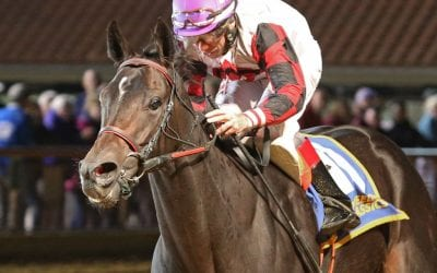 """""""Why we do this"""": Scythe gives Condon first WVBC win"""