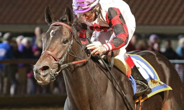 In Focus: Wagering Charles Town's Thanksgiving night card