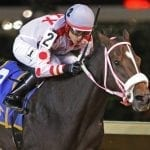 WVBC: Spring Lass surprises for Armstrong's two-horse stable