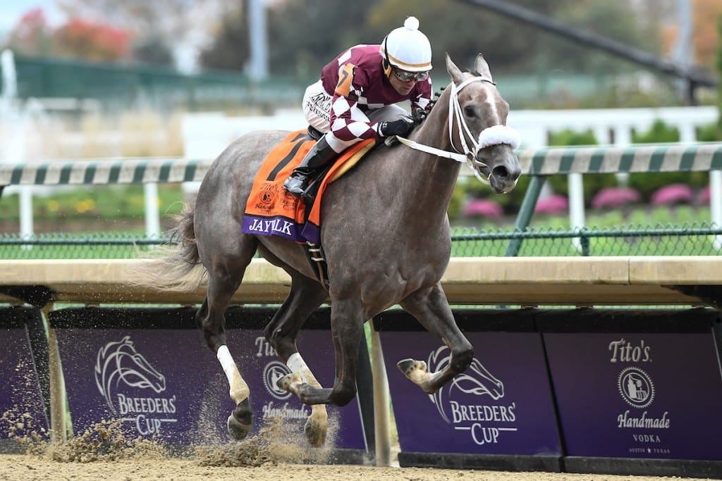 Breeders Cup Day 1 Jaywalk Midlantic Connected Runners