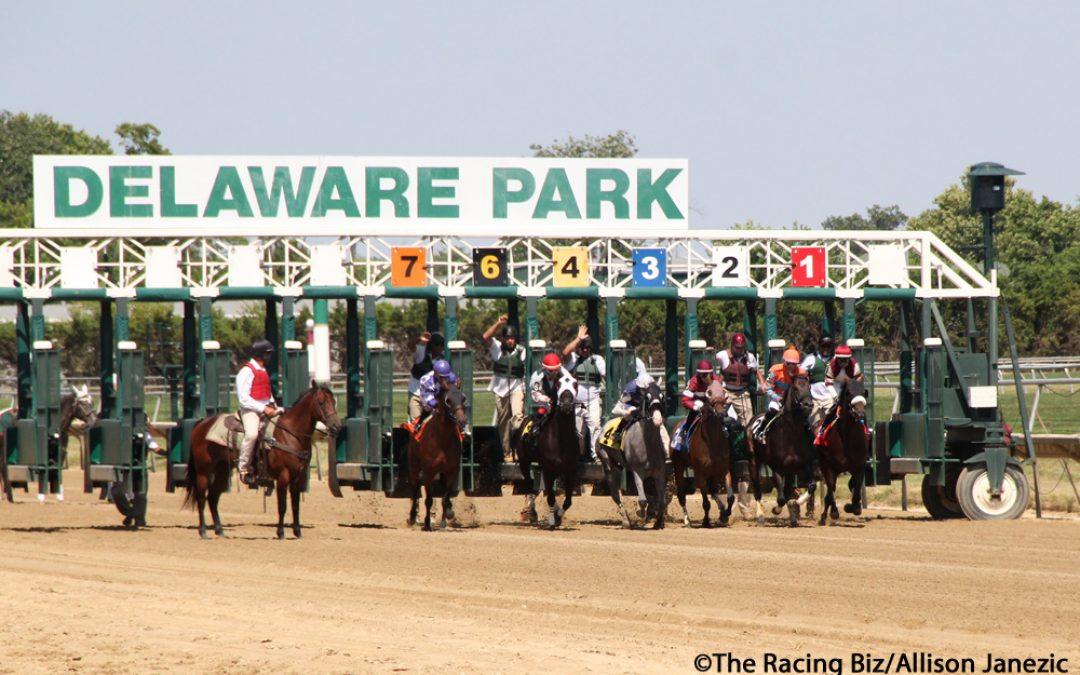 How is sports betting going at Delaware Park?
