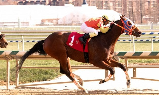 Colonel Sharp sizzles in Laurel allowance