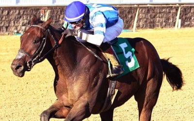 2yo stakes winners clash in James F. Lewis III Stakes