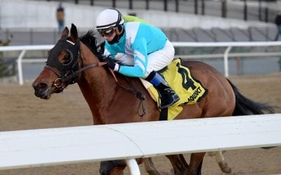 Blamed takes G3 Comely