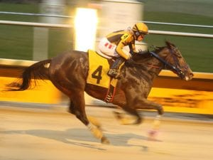 Trainer Dee Curry among guests on Saturday's Off to the Races radio