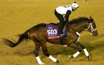 Breeders' Cup: Jason Servis arrives with an entourage