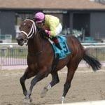 Call Paul looks to dial up Md. Million Sprint win