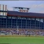 Ghosts of racetracks past: Bowie and its breed