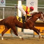March 23 handicapping contest leaderboard