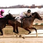 Mens Grille cooks up a stake winner in Enchanted Ghost
