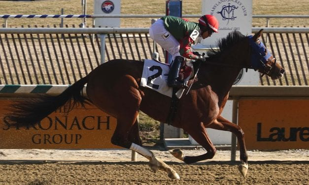 Las Setas looks for third straight in Beyond the Wire