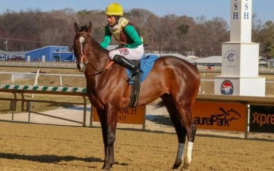 What we learned (and didn't) this weekend at Laurel Park