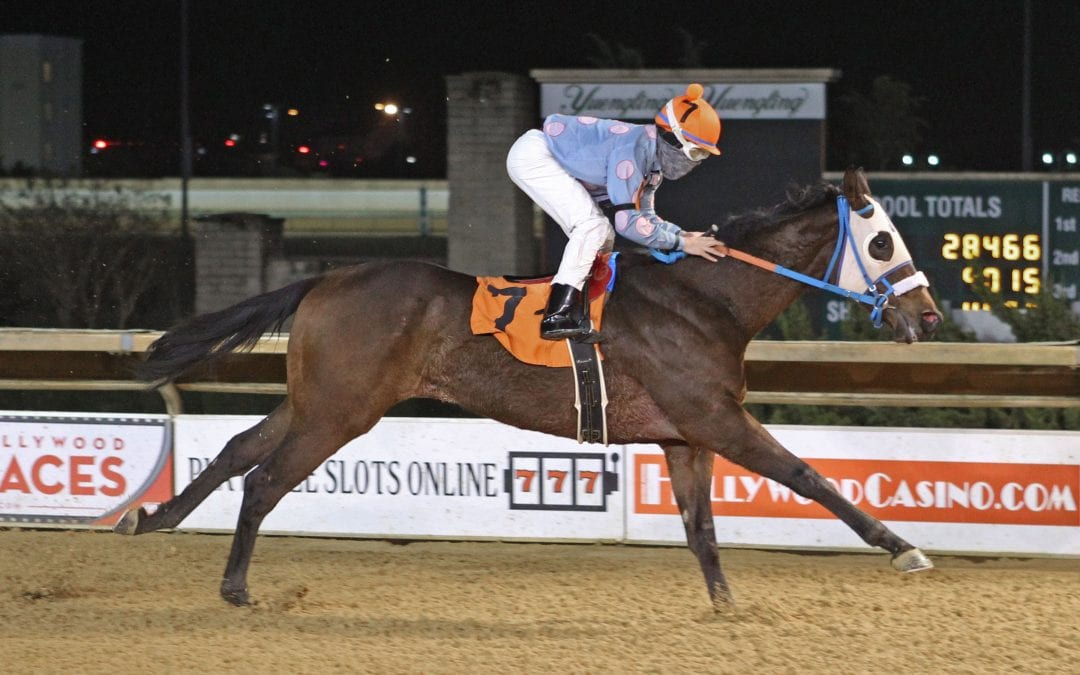 Hero's Man looks to build on super debut