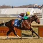 Alwaysmining, Las Setas speed to promising victories
