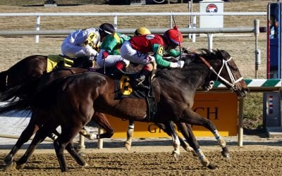 Laurel Park picks and ponderings December 1, 2019