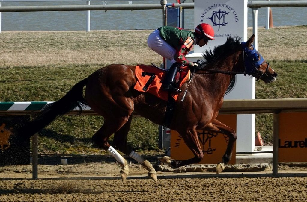 Out for a Spin zooms to head of Top Midlantic-bred Poll