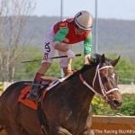 Runnin'toluvya, Anna's Bandit loom large in WVBC features