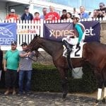 Alwaysmining punches Preakness ticket with Tesio romp