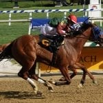 Las Setas outfights Our Super Freak to earn Black-Eyed Susan berth