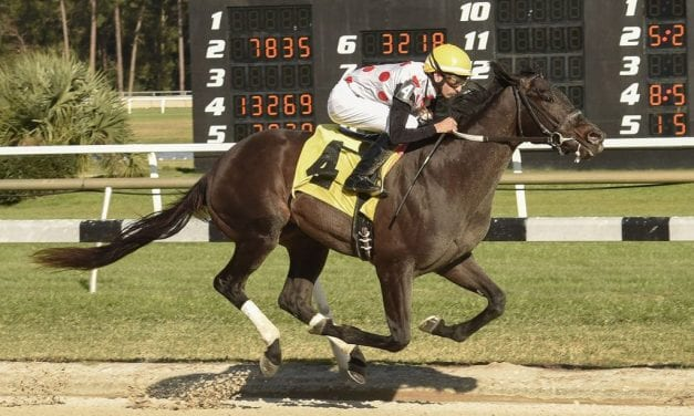 "Win Win Win ""a go"" for Preakness"