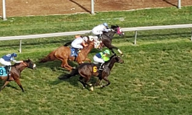 Pimlico closer is first win for trainer Stettinius