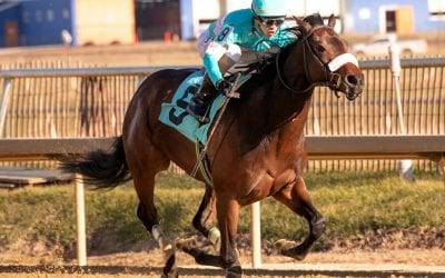 Pricey Autonomous looks for first stakes score in Blue Mtn.