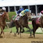 """""""Win and in"""" stakes introduced for May Maryland Jockey Club races"""
