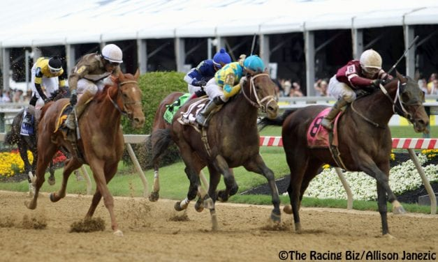 """Win and in"" stakes introduced for May Maryland Jockey Club races"
