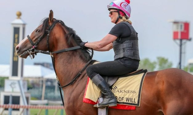 Preakness Profiles: War of Will