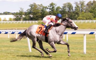 Virginia-breds center stage for Colonial opener