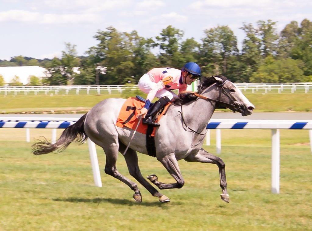 Fionnbharr broke her maiden at Laurel Park. Photo by Jim McCue, Maryland Jockey Club.