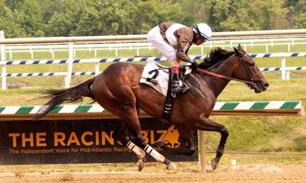 Pricey purchase Gnarly Mo cruises to maiden score