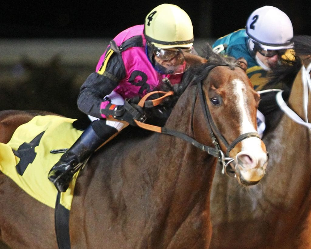 Mean Bean won an allowance race at Charles Town. Photo by Coady Photography.