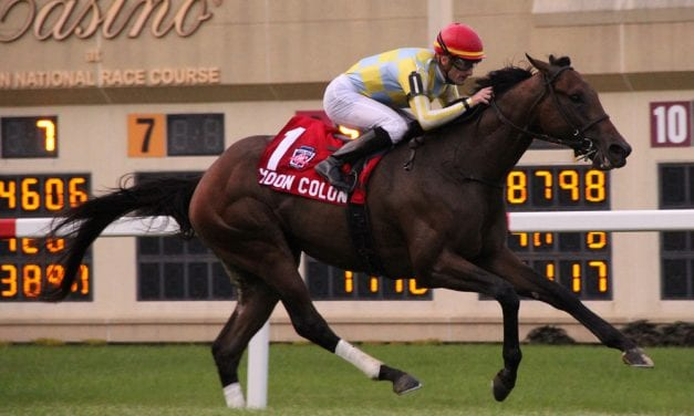 Patience a virtue for Moon Colony in G2 Penn Mile