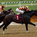 Please Flatter Me gets back on track with Alma North win