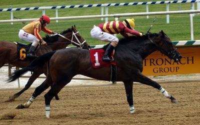 Please Flatter Me, Cordmaker join Top Midlantic-bred Poll