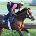Maximum Security wraps up pre-Haskell work
