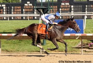 """Elate """"back to old form"""" with dominant Delaware Handicap score"""